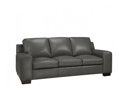 Bailey Leather Sofa Set