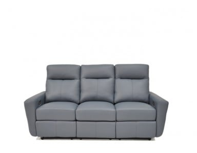 Williston Leather Reclining Sofa & Set
