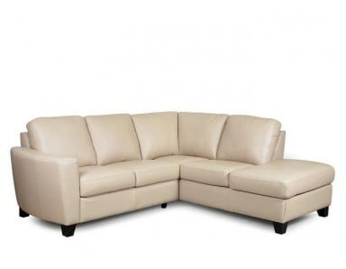 Tribecca Leather Sectional