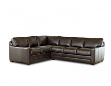 Patrice Leather Sectional